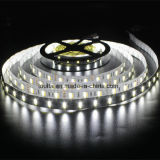 El blanco caliente blanco SMD5050 de la lámpara LED Strip