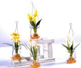 Tulipán colorido artificial en el florero de cristal colgante para su decoración casera