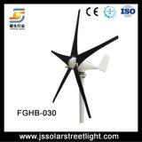 Getrennte Straßen-Laterne des Wind-Solarmischling-LED