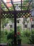Tudo em uma luz solar clara do jardim 6W-20W do diodo emissor de luz do projeto