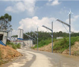 Vent solaire 50W tout dans un système de réverbère pour l'éclairage de jardin en Afrique du Sud