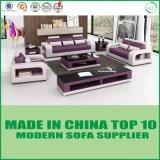 Insieme moderno del sofà del cuoio della casa della mobilia