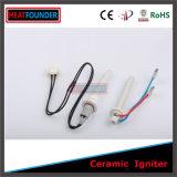 Fuente de la energía eléctrica y calentador del cartucho de la certificación de la ISO