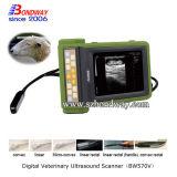 Varredor veterinário dos produtos 4D Doppler do ultra-som