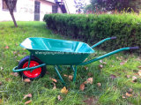 Low Priceの熱いSelling Wheelbarrow