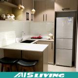 Gabinetes de cozinha do orçamento com o especialista do MDF da melamina para os apartamentos econômicos (AIS-K056)