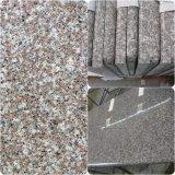 G682 продают Prefab гранита/ванную комнату ламината поверхности мрамора твердые/кухню/кварц/естественный каменный Countertop оптом