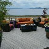 Jeu d'intérieur et extérieur de sofa de loisirs de rotin de PE de patio