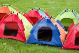 Im Freien Wasser-beständiges Oxford-Tuch-faltbares Haustier-Hundekatze-Lager-Zelt-Innenhaus