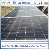 310W Macrolink Mono PV Panels Solar Modules con Competitive Price