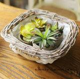 Cesta de mimbre de la mini de Quadrate decoración de la flor