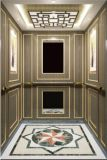 مسافر مصعد مصعد مرآة يحفر سيّد & [مرل] [أكسن] [هل-إكس-024]