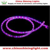 セリウムUL SAAの標準防水屋外の使用LED装飾的なライト