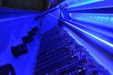 Пожар-Новая толковейшая сортировщица цвета CCD для фасолей