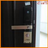 Стальные двери безопасности с высоким индексом безопасности (FAM-D-JX-D2110)