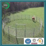 Rampes de chargement de bétail, le meilleur équipement de bétail