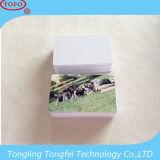 Cartão de identificação de PVC para jato de tinta em branco para impressora Epson e Canon (impressão de lado de Doube)