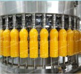 Jus d'animal familier ou de bouteille en verre remplissant chaîne de production complète