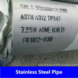 Tubo senza giunte dell'acciaio inossidabile del fornitore ASTM A312 della Cina (304 304L 316L)