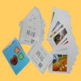 Cartes éducatives en plastique de cartes de jeu impression polychrome de toute neuve