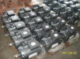 삼상 48/56/143/145/213/216/284/286tt Frame NEMA Motor (UL)