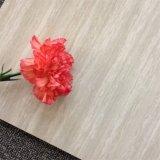 Mattonelle di pavimento di disegno di modo lucidate