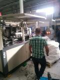 セリウムとの2つのキャビティPet Soybean Bottle Blowing Mold Machine
