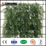 Walls를 위한 Quality 높은 Cheaper Artificial Vertical 정원 Plants