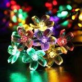 Luz de Natal Solar-Psta da decoração da flor 2016 a forma a mais nova