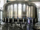 Het geavanceerd technische Mineraalwater plant de Machine van het Drinkwater