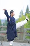 Vêtement de toile normal de Taoism de robes longues de collier oblique mince de ressort et de section d'été