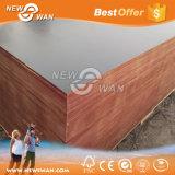 構築の具体的な型枠の材木の閉める合板のポプラのコア