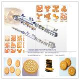 Linea di produzione dei cracker del biscotto con CE, iso