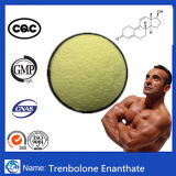 Tren Enanthate同化Steroideの粉Trenbolone Enanthate