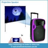 Matériel sonore de PA de système de projection portative en plastique du haut-parleur DEL