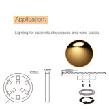 침실을%s 12V SMD5050 장난 좋아하는 요정 LED 내각 빛