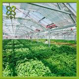 Estufa agricultural da PC-Folha para a pesquisa