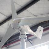 300W MPPT 관제사를 가진 수평한 바람 터빈