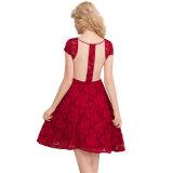 Bestes verkaufendes reizvolles Bodycon Kleid