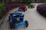 O Buggy dos miúdos vai Kart 80cc com Ce