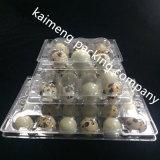 Caja plástica del huevo de huevo 12PCS del claro al por mayor del conjunto para las codornices (caja plástica del huevo)
