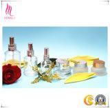 Intero insieme di alto modo del contenitore cosmetico per la crema per il corpo