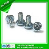 Diebstahlsichere Schrauben-Qualitäts-Edelstahl-Schraube M4