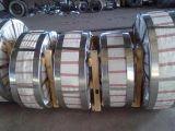 Bobine galvanisée froide de roulis en acier