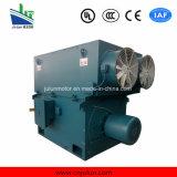 Grande/motor assíncrono 3-Phase de alta tensão de tamanho médio Yrkk5601-8-450kw do anel deslizante de rotor de ferida