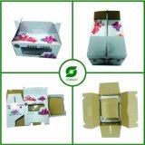 Caixa de embalagem de papel reciclado com janela clara
