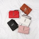 De066. Handtaschen-Handtaschen-Entwerfer-Handtaschen-Form-Handtaschen-Leder-Handtaschen-Frauen-Beutel-Schulter-Beutel-Kuh-Leder der Damen