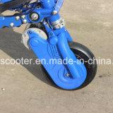 3 Räder, die schwanzloser MotorShanding elektrischen treibenden Roller falten