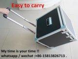 Tester portatile di lumen il TDC del LED con il tester di corrente continua (LT-SM999)