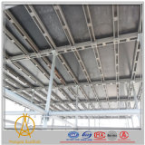Armatura rapida della serratura per costruzione (fabbrica in Cangzhou)